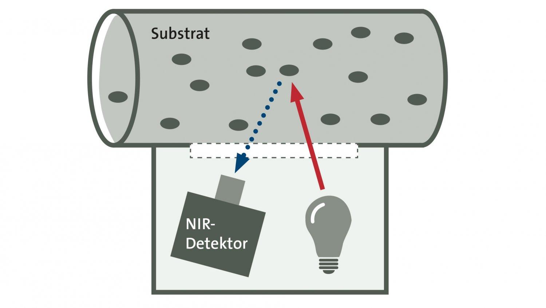 funktionsschema-nir-sensor-nährstoffmessung-zu.jpg